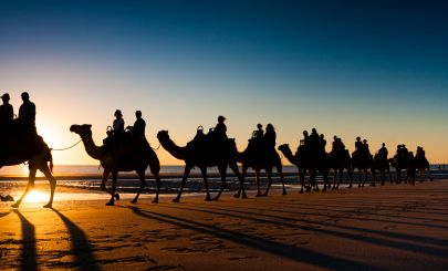 broome-camels-sunset